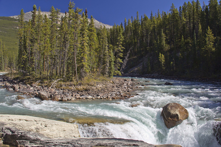 Sunwapta Falls Jasper National Park | My Wandering Voyage travel blog