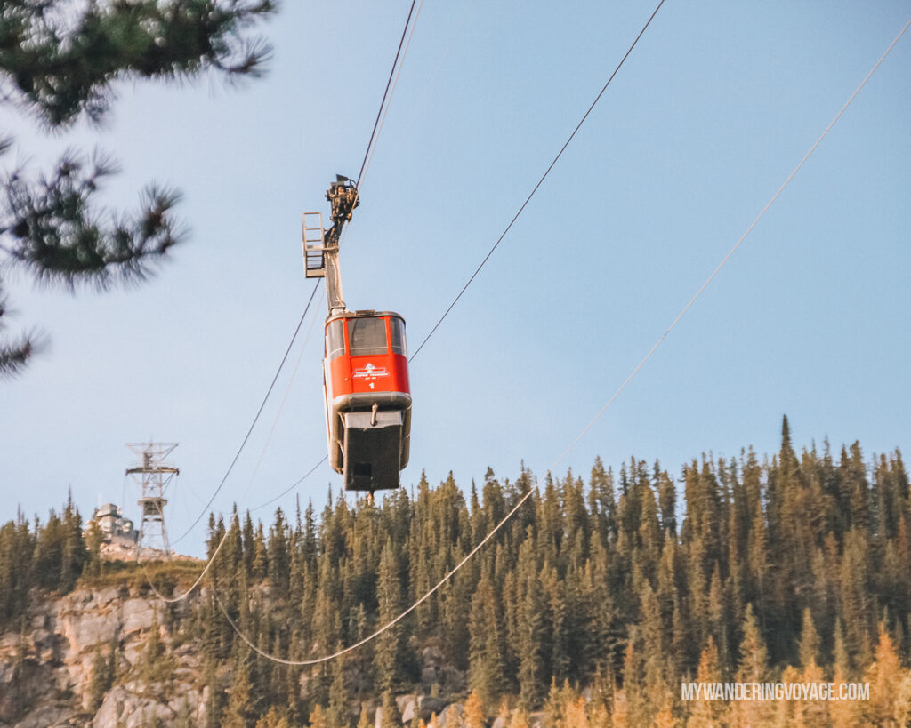 Jasper Skytram | | Top things to see in Jasper and Banff | My Wandering Voyage