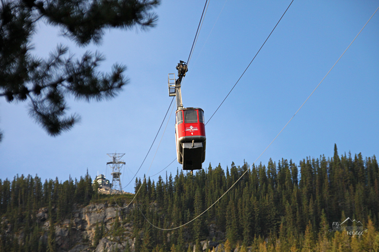 Jasper Tram Jasper National Park | My Wandering Voyage travel blog