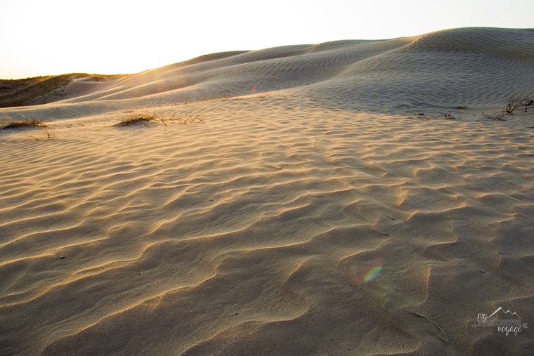 Great Sand Hills, Saskatchewan, Canada - Fire and Ice: A Canadian Road Trip | My Wandering Voyage travel blog