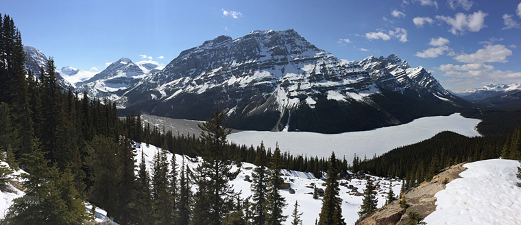 Peyto Lake, Alberta - Fire and Ice: A Canadian Road Trip   My Wandering Voyage travel blog