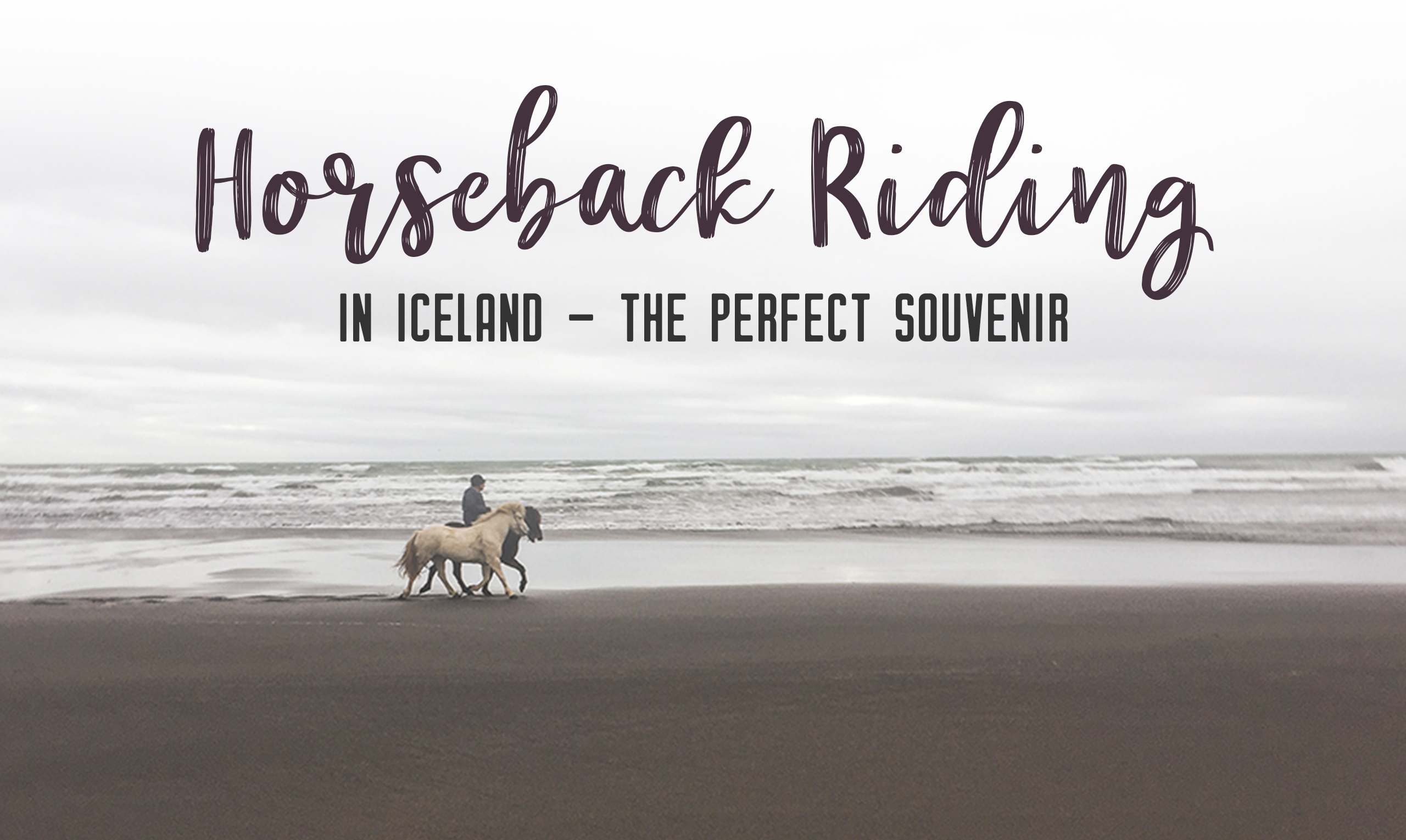Horseback riding in Iceland is the perfect souvenir. Do your research on the place you'd like to book with. I am so happy I booked with Alhestar - Horseback Riding in Iceland, the perfect souvenir | My Wandering Voyage travel blog