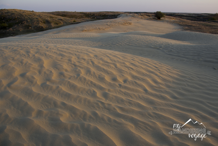 Great Sand Hills Saskatchewan