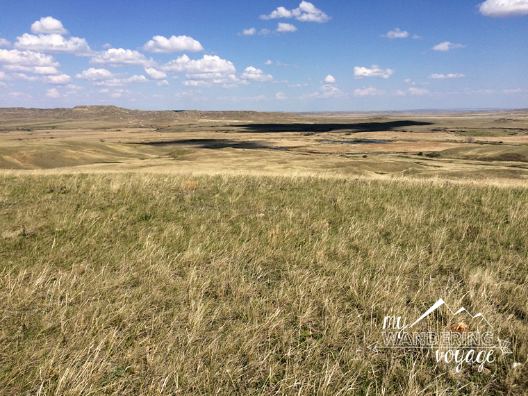 Saskatchewan Grasslands National Park