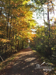 Elora Cataract Trail Fall - Trans Canada Trail | My Wandering Voyage travel blog
