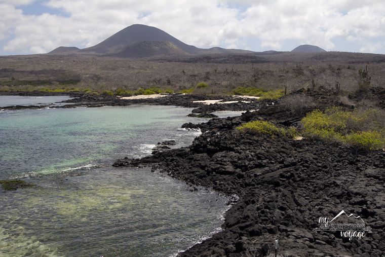 Floreana Island, Galapagos Islands | My Wandering Voyage travel blog