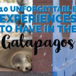 10 unforgettable experiences to have in Galapagos | My Wandering Voyage travel blog