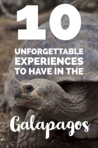 10 unforgettable Galapagos experiences | My Wandering Voyage travel blog