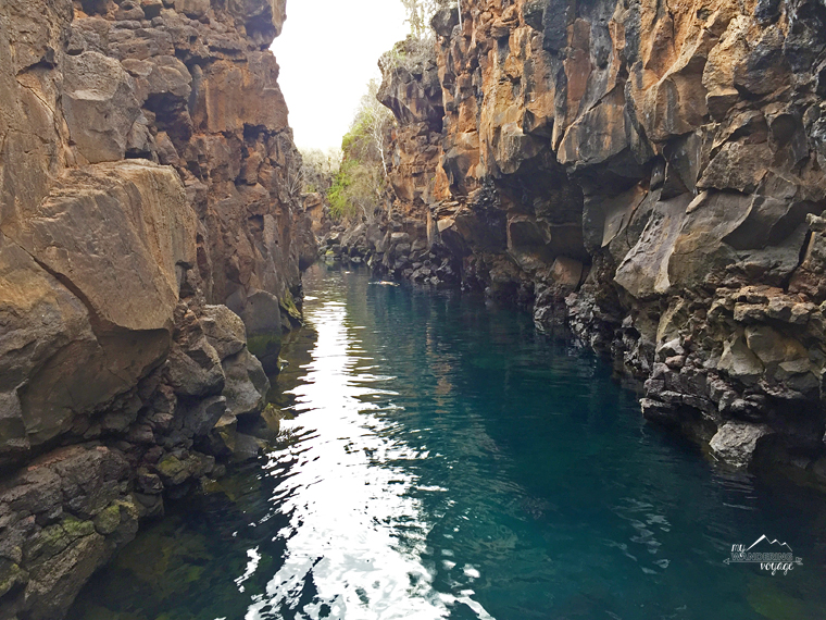 Las Grietas swimming in the Galapagos | My Wandering Voyage travel blog