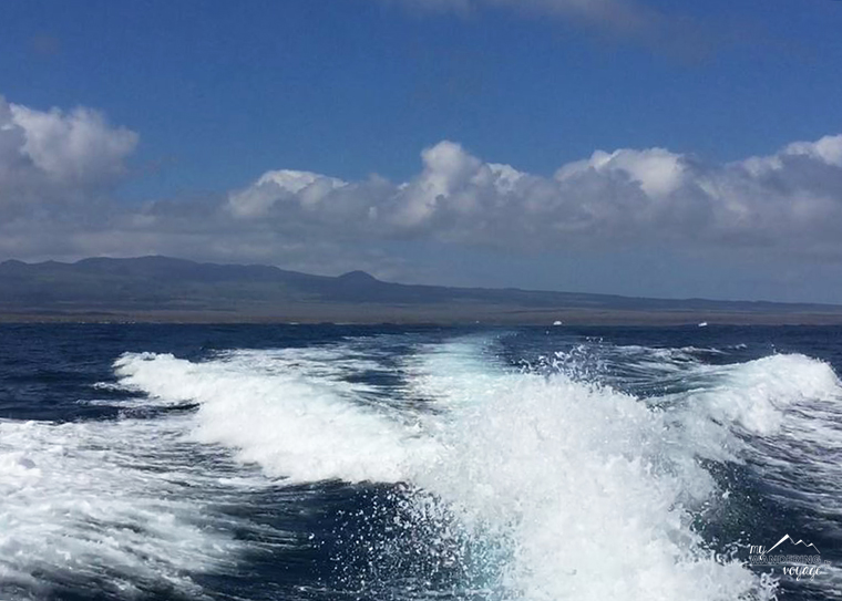 Take a speedboat between islands of the Galapagos | My Wandering Voyage Travel blog