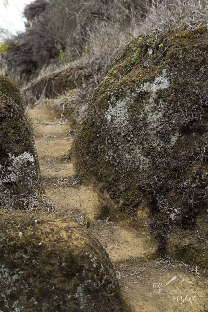 pirate stairs Floreana Island Galapagos | My Wandering Voyage travel blog