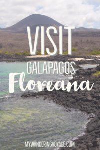Visit Floreana Island, Galapagos | My Wandering Voyage travel blog