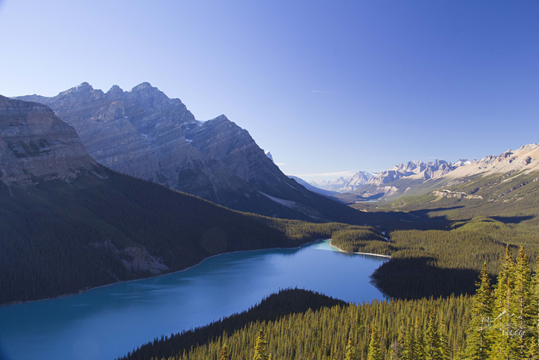 Peyto Lake, Banff National Park, Canada - How to take better travel photographs | My Wandering Voyage travel blog