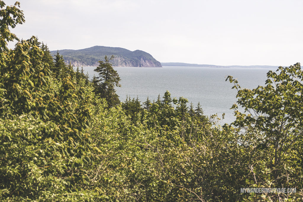 Discover Fundy National Park - 10 treasures to discover in New Brunswick, Canada. From rugged coasts to sandy beaches to French heritage and fresh seafood, New Brunswick has it all | My Wandering Voyage