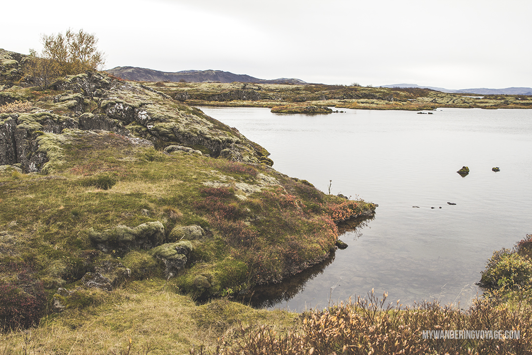 Thingvellir National Park - The Golden Circle is a well-known destination in Iceland, and it's easy to see why. The Golden Circle is part of a road loop that can be seen in a day from Reykjavik and hits some of Iceland's most famous landmarks | My Wandering Voyage travel blog