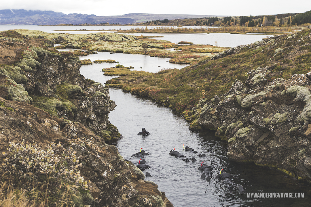 Silfra - The Golden Circle is a well-known destination in Iceland, and it's easy to see why. The Golden Circle is part of a road loop that can be seen in a day from Reykjavik and hits some of Iceland's most famous landmarks | My Wandering Voyage travel blog