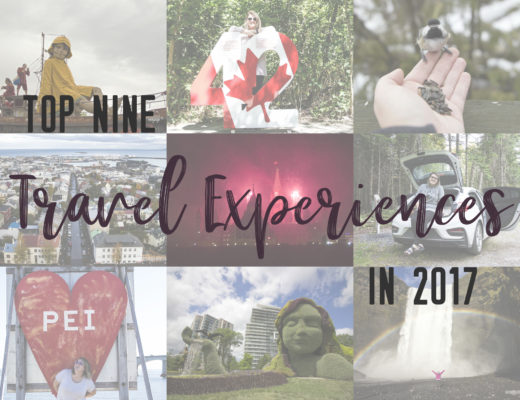 Thank you 2017 for being stellar, here's to 2018 and many more travel experiences ahead!   My Wandering Voyage travel blog
