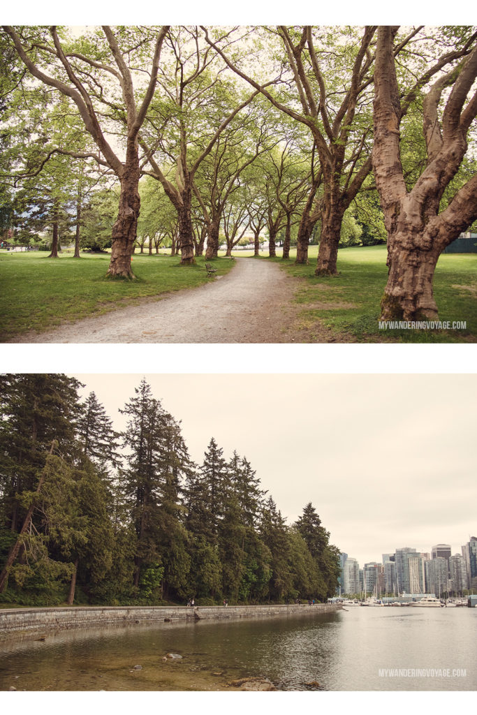 Stanley Park | From urban eats to nature walks, Vancouver, Canada's western metropolis, is ready for you to explore. Take in Stanley Park and get to know Vancouver's neighbourhoods with this two-day itinerary. | My Wandering Voyage #Vancouver #BritishColumbia #Canada #travel #itinerary #Canadatravel