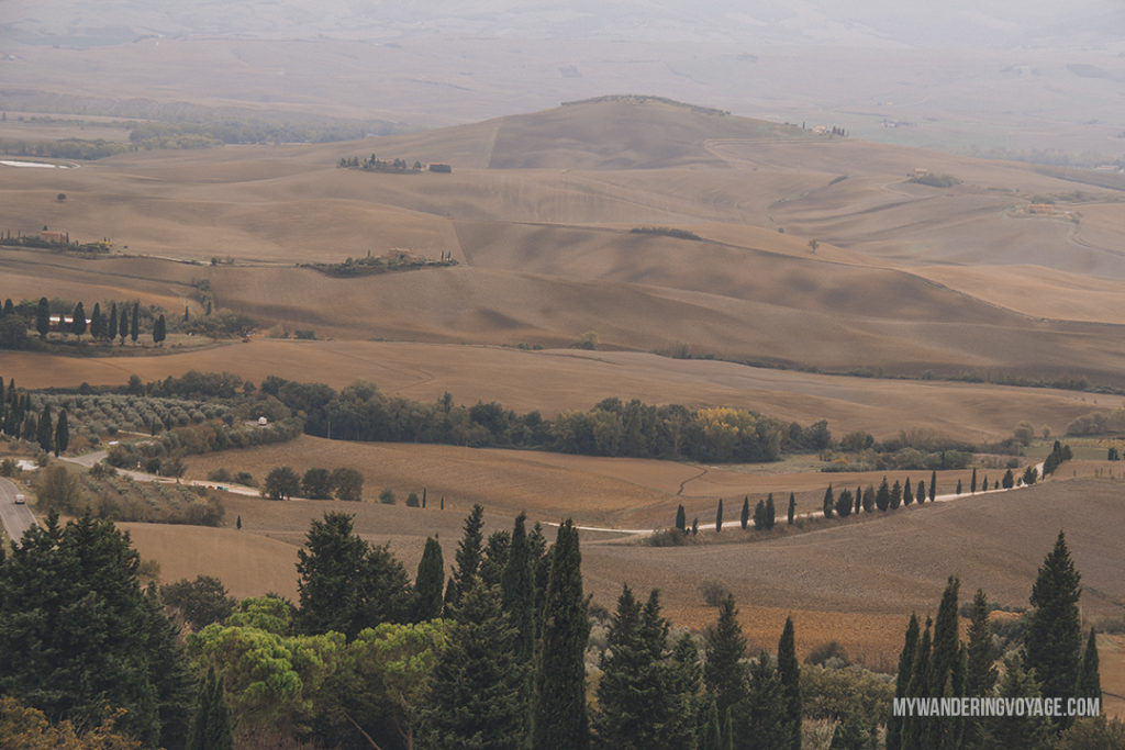 Pienza | Find the best Tuscan villages to visit from Rome in a day. Tuscany is known for its rolling hills, its vibrant cultural cities, its picturesque hilltop towns, and for the food and wine that people flock here for. | My Wandering Voyage #travel blog #Tuscany #Italy #Europe