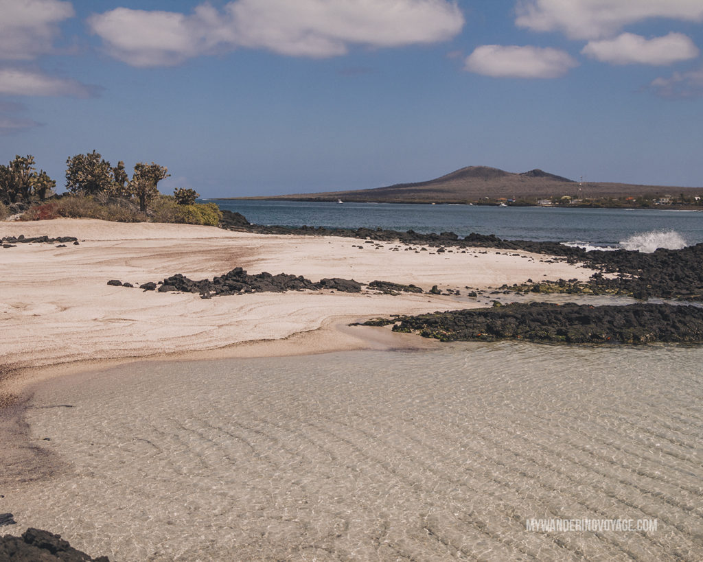 Floreana beach | A trip to the Galapagos Islands will be unforgettable, and with these Galapagos Islands travel tips, you'll be sure to have a worry-free trip from start to finish. | My Wandering Voyage travel blog #galapagos #galapagosislands #travel #traveltips #Ecuador #southamerica
