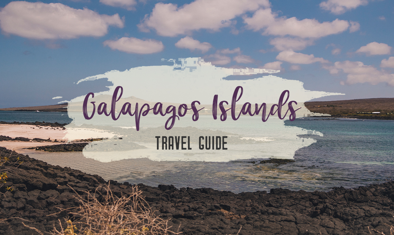 A trip to the Galapagos Islands will be unforgettable, and with these Galapagos Islands travel tips, you'll be sure to have a worry-free trip from start to finish. | My Wandering Voyage travel blog #galapagos #galapagosislands #travel #traveltips #Ecuador #southamerica