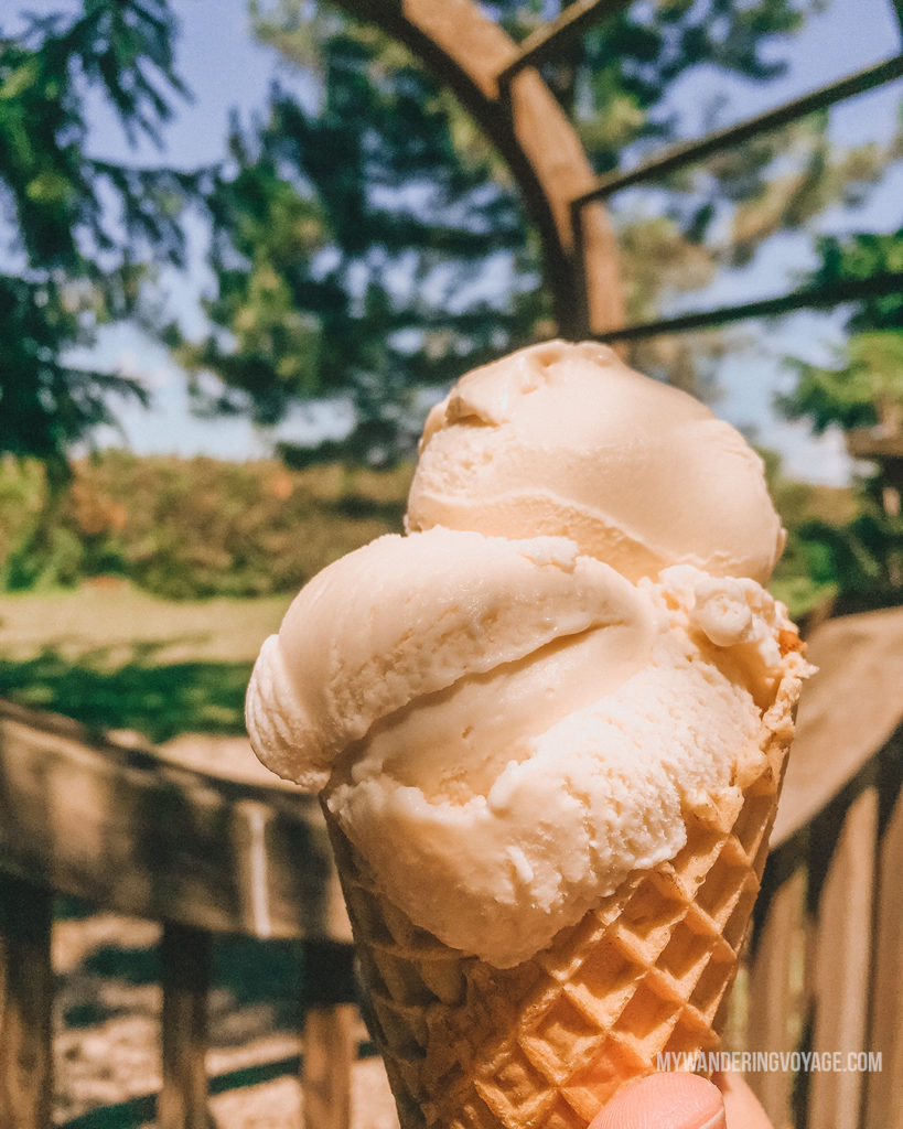 Lavender Ice cream, Mapleton's Organic Ice cream | Are you an explorer? A foodie? Or how about a beach bum? There's something for everyone in this list of fantastic day trips from Toronto | My Wandering Voyage travel blog #toronto #ontario #canada #ontariotravel #travel