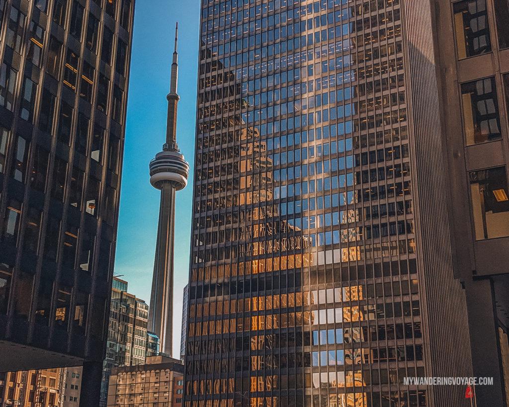CN tower framed between buildings