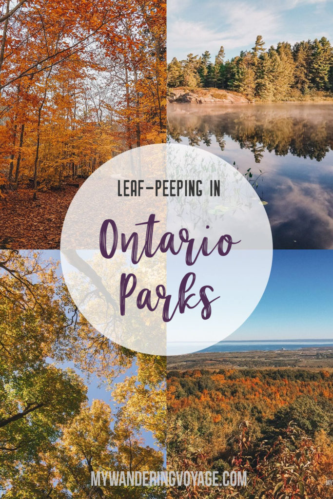Go for an autumn road trip to see the best Ontario Provincial Parks to visit in the fall, including Algonquin, Killarney, Killbear provincial parks and more. Enjoy the crisp air and the vibrant shades of fall at Ontario Provincial Parks.   My Wandering Voyage travel blog #Ontario #Canada #Algonguin #Killarney #OntarioParks #travel #camping #roadtrips #autumn