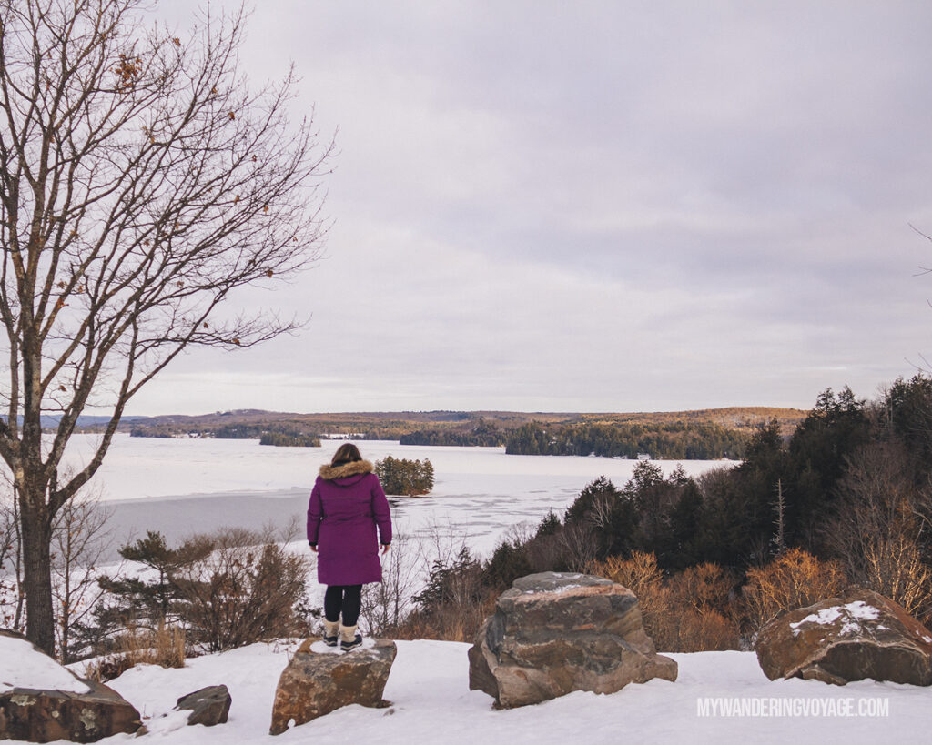 Overlooking lake at Lions Lookout in Huntsville