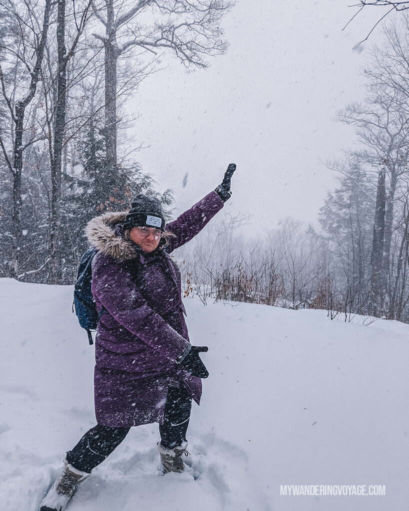 snowy lookout point Algonquin