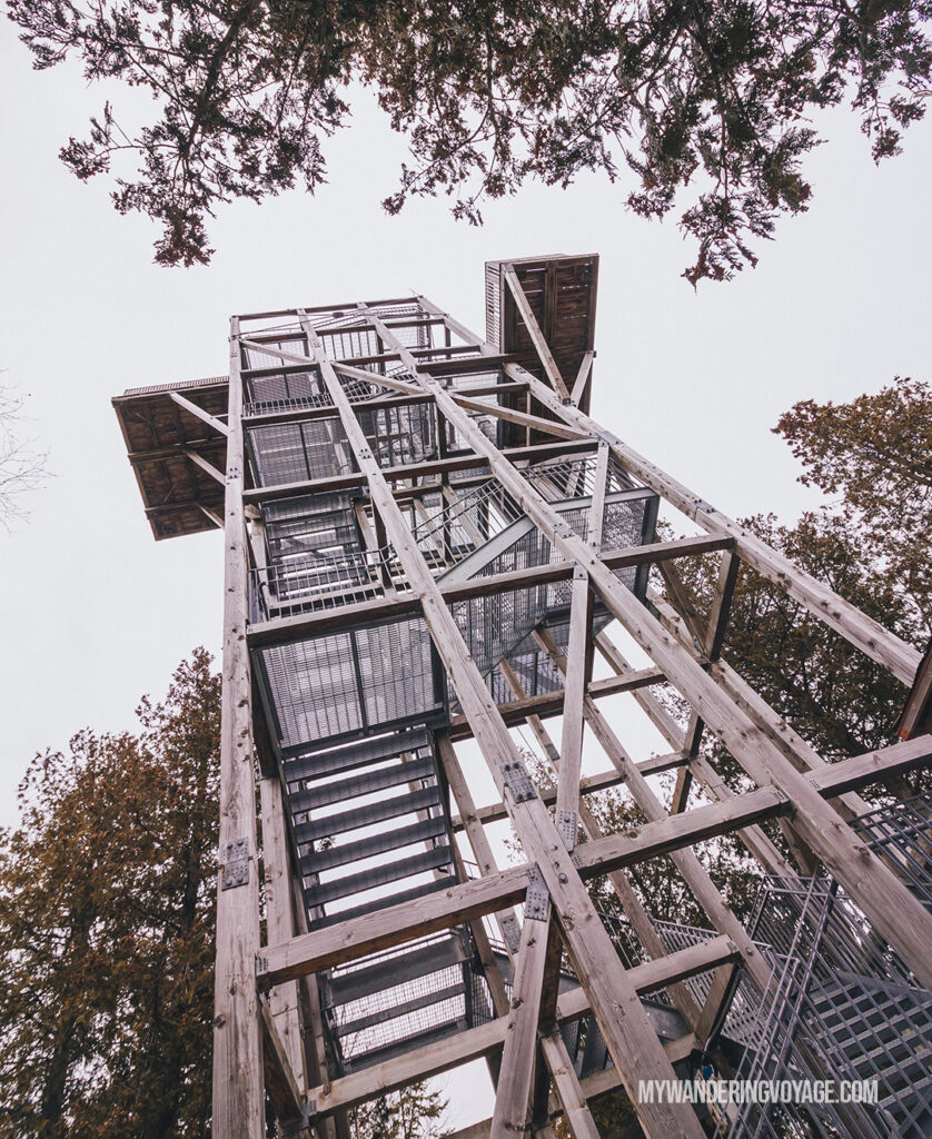 Bruce Peninsula lookout tower | 25 best scenic lookouts in Ontario | My Wandering Voyage travel blog
