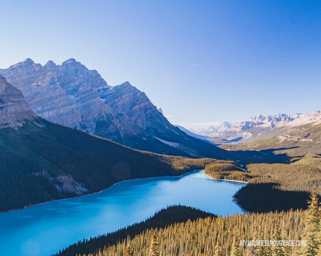 Peyto Lake, Banff National Park | Canada Travel Guide | My Wandering Voyage travel blog