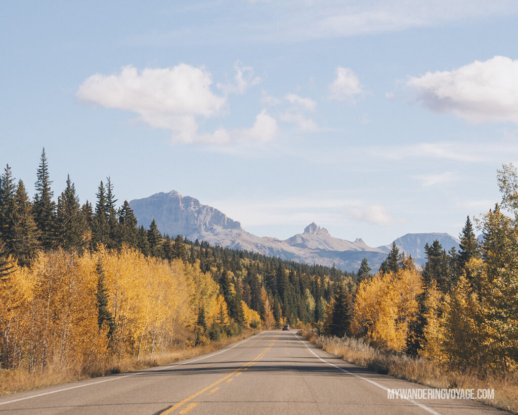 See all the fall colours along the road! Road trip tips: What you need to know about taking a cross-country road trip | My Wandering Voyage travel blog #Travel #RoadTrip #Canada #USA