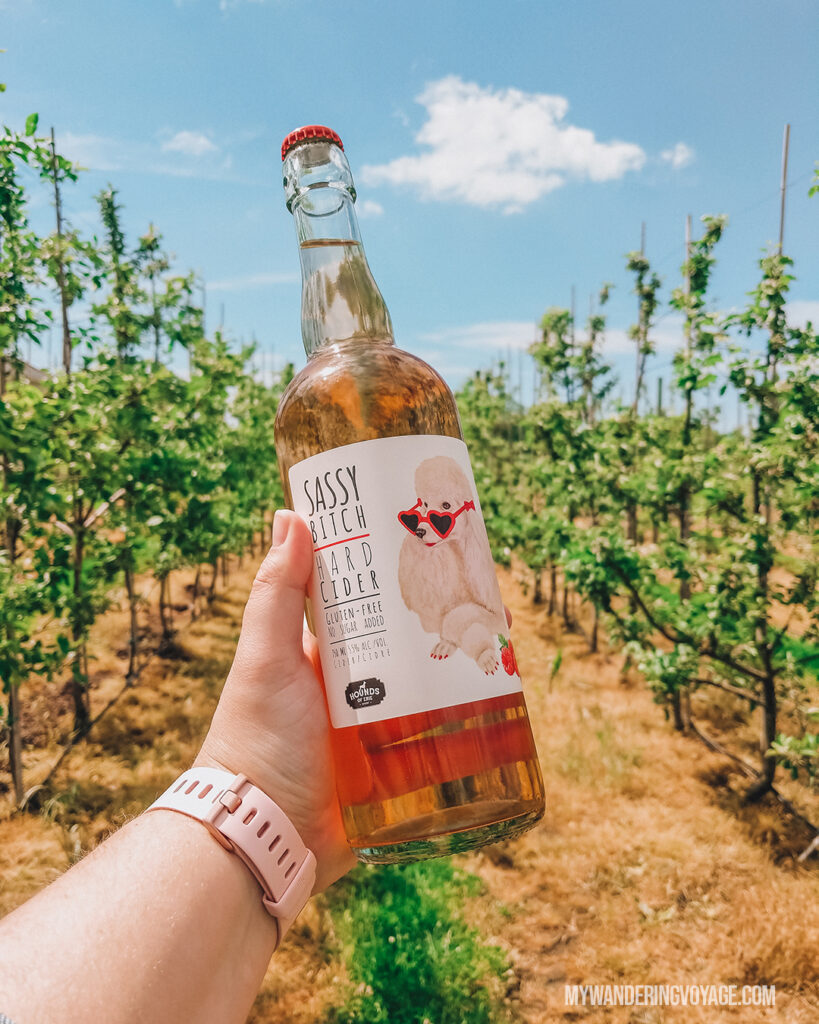 Delicious raspberry cider from Hounds of Erie | Discover Ontario's Garden: Relaxing things to do in Norfolk County | My Wandering Voyage travel blog