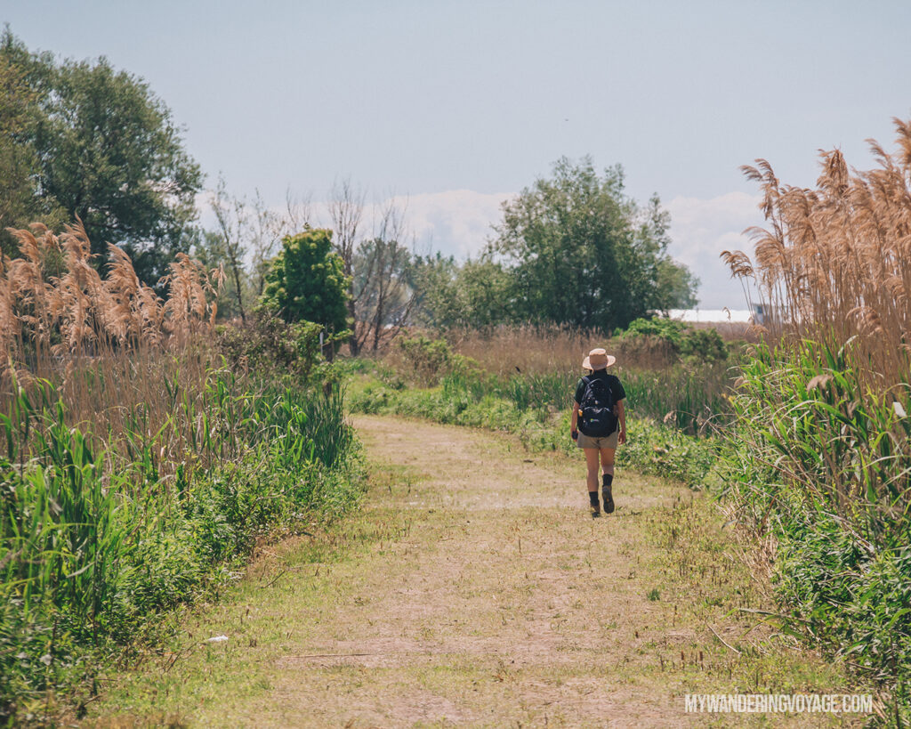 Hiking in Norfolk County | Discover Ontario's Garden: Relaxing things to do in Norfolk County | My Wandering Voyage travel blog
