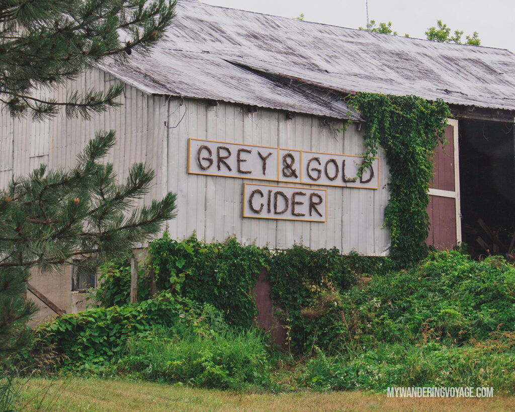 Grey & Gold Cider | Ontario Cider: Take a self-guided Georgian Bay cider tour | My Wandering Voyage travel blog #Ontario #Cider #GeorgianBay #daytrip