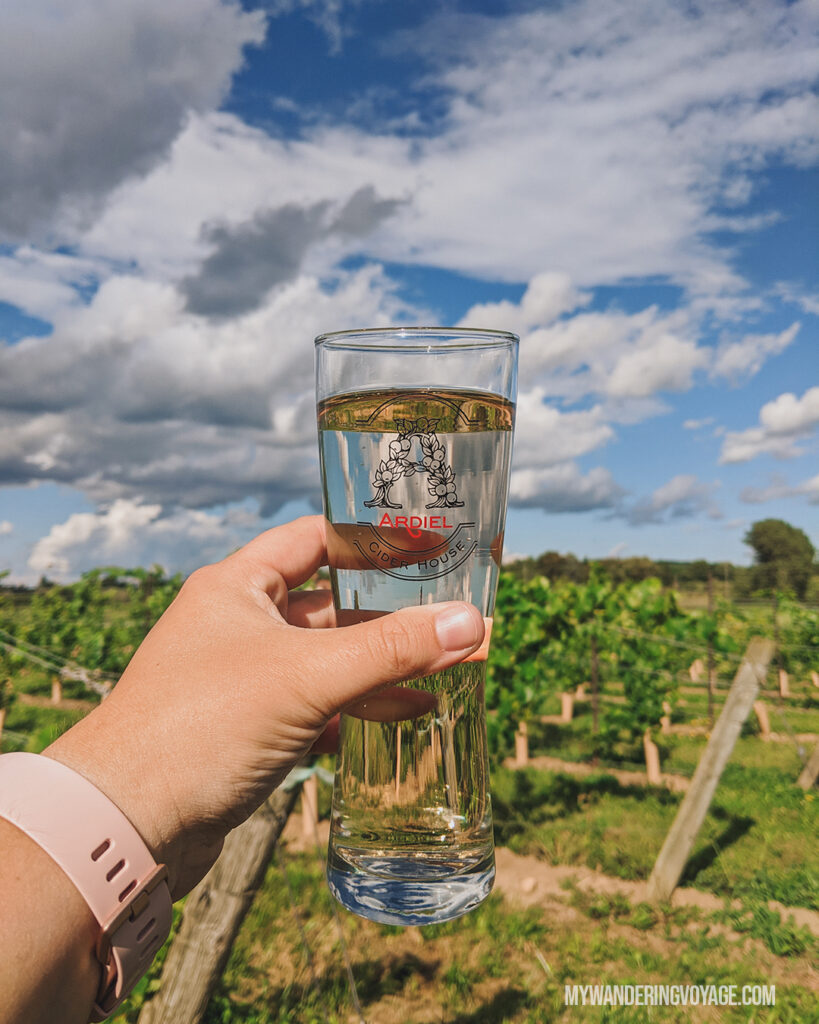 Ardiel Cider at Georgian Hills Vineyard | Ontario Cider: Take a self-guided Georgian Bay cider tour | My Wandering Voyage travel blog #Ontario #Cider #GeorgianBay #daytrip