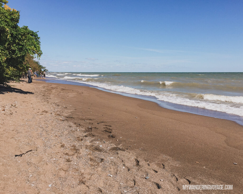Point Pelee National Park tip | The Ultimate Guide to National Parks in Ontario | My Wandering Voyage travel blog #travel #Ontario #Canada #BrucePeninsula #ThousandIslands #camping