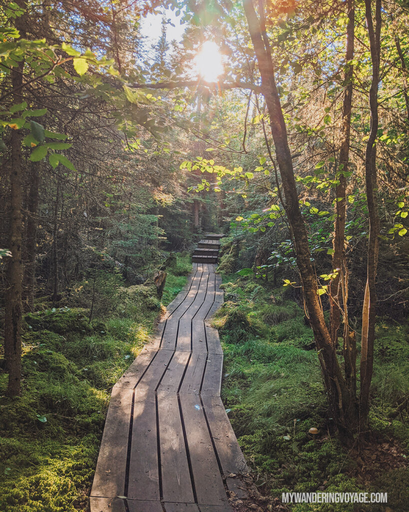Coastal Hiking Trail at Pukaskwa National Park | The Ultimate Guide to National Parks in Ontario | My Wandering Voyage travel blog #travel #Ontario #Canada #BrucePeninsula #ThousandIslands #camping