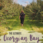 Take a road trip through Ontario's Georgian Bay area in search of liquid gold. This self-guided Georgian Bay cider tour hits all the spots for exploring Ontario's best cider producers. | My Wandering Voyage travel blog #Ontario #Cider #GeorgianBay #daytrip