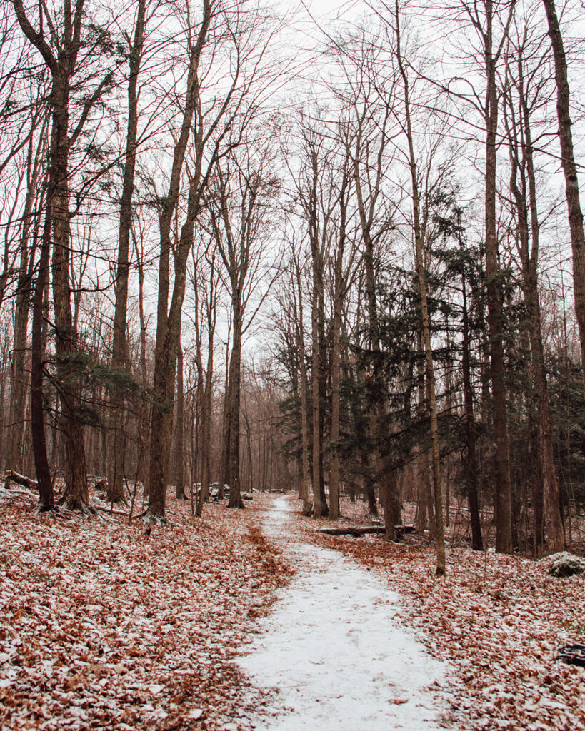 Crawford Lake Conservation Area | Stellar places for snowshoeing in Ontario | My Wandering Voyage travel blog #travel #winterexercise #snowshoeing #Ontario #Canada