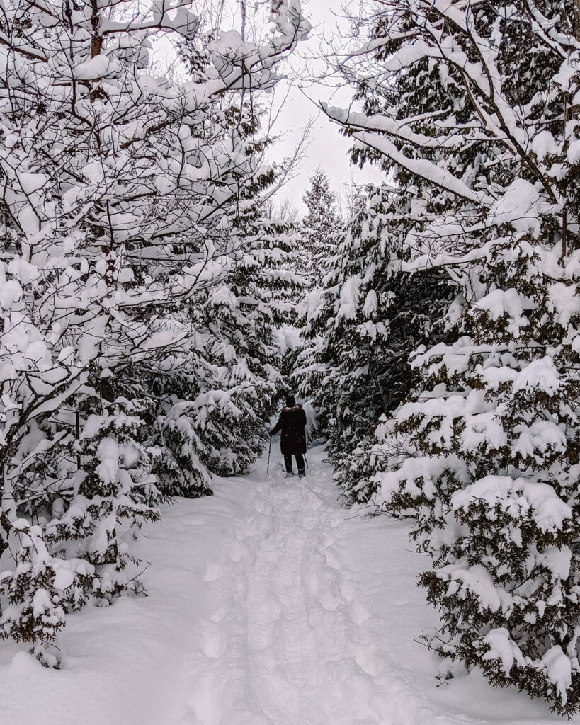 Snowshoeing in the Backyard | Stellar places for snowshoeing in Ontario | My Wandering Voyage travel blog #travel #winterexercise #snowshoeing #Ontario #Canada