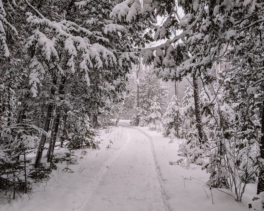 MacGregor Point Provincial Park | Stellar places for snowshoeing in Ontario | My Wandering Voyage travel blog #travel #winterexercise #snowshoeing #Ontario #Canada
