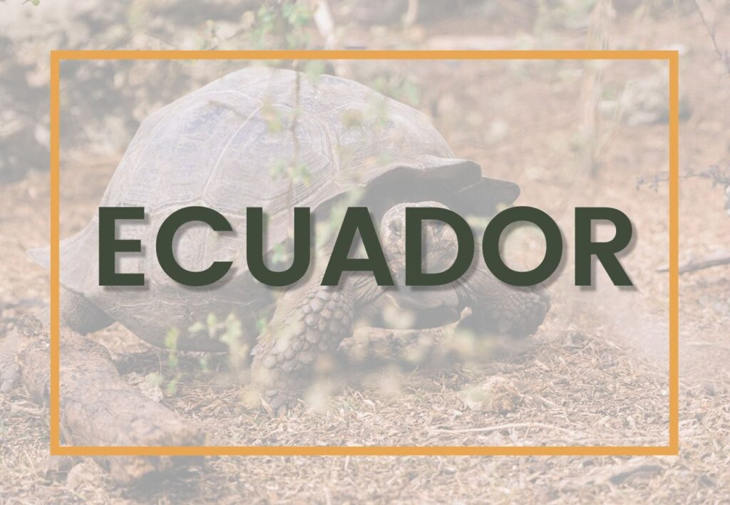 Best things to do in Ecuador | Ecuador Destinations Graphic