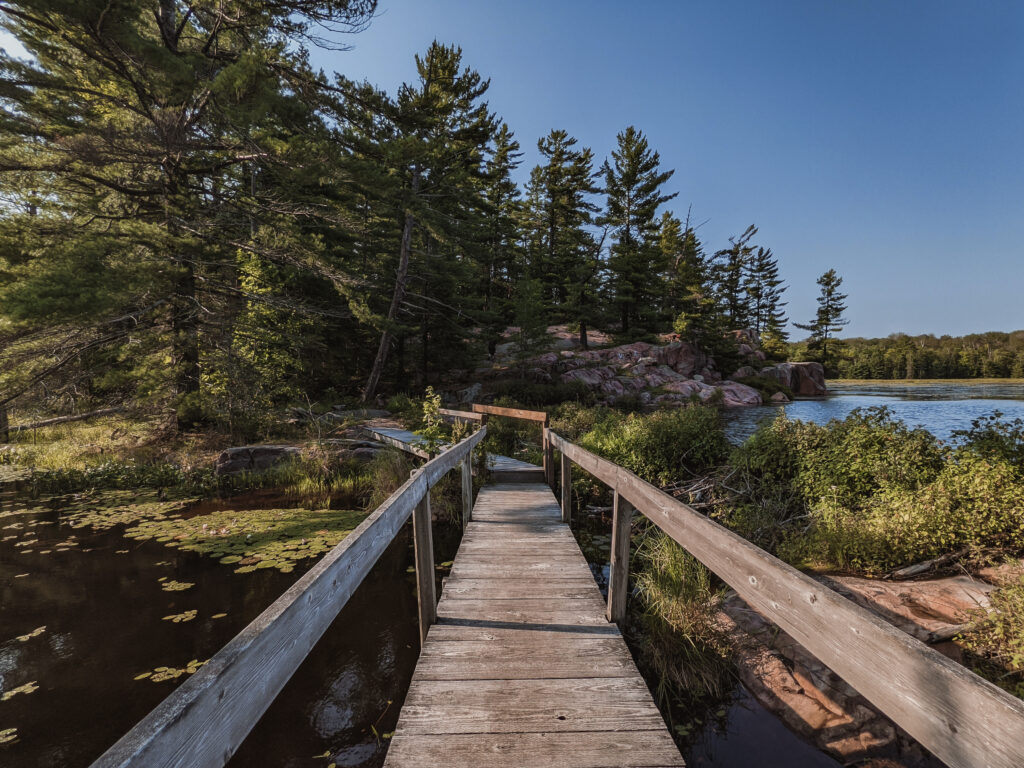 cranberry bog trail | Best Hikes in Ontario | My Wandering Voyage travel blog